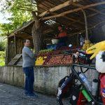 Leckere Früchte findet man an vielen Strassenmärkten
