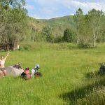 Freude im hohen saftigen Gras