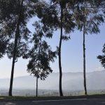 Auf dem Rücken des Mt. Bisoke gehts lange rauf